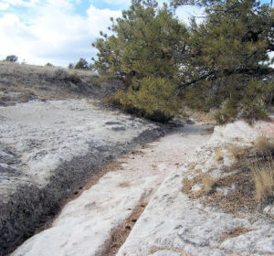 Original Oregon Trails Ruts in Guernsey Wyoming