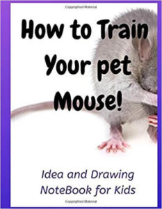 Pet Mouse training