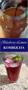 Blueberry Lemon Kombucha
