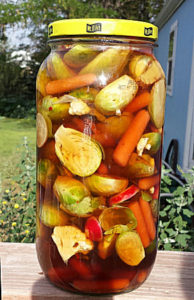 My ermented-brussel-sprout-veggie-kimchi-fermentation just waiting to be eaten!