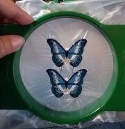 FSL butterflies in the hoop